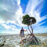 "<span class=""title"">島をe-bikeで回ってたら海岸にポツンと佇むマングローブが目に止まった。 ふと、 @taigaglass を思い出した。 #paradiceishere #islandtrip #islandvibes #okinawatrip #okinawaphoto</span>"