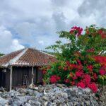 "<span class=""title"">📍Taketomi Island🇯🇵  Beautiful bougainvillea with Okinawan old style house💕  ブーゲンビリアがあちこちで咲いていた竹富島🏖 琉球建築とブーゲンビリアの組み合わせが素敵すぎて 何度 ..</span>"