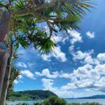 "<span class=""title"">. 🌳  真夏の沖縄・大宜味村💙💚 太陽の日差しが懐かしい〜☀️😇  .  今週は寒くなるみたいだね🥶🍃 暖かくして過ごしましょう♪ 今週もよろしくお願いします😚🤙🏾  #okinawaprefecture #okinawa #okinawatrip #okina ..</span>"