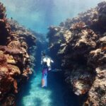 "<span class=""title"">海の世界✨ . 7月の沖縄 . #沖縄 #慶良間 #座間味 #渡嘉敷 #leaderfins #longfins #skindiving #freediving #okinawadiving #okinawa #boatdiving #diving #gir ..</span>"