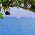 """<span class=""""title"""">みなさん、今年はお世話になりました。インスタ始めて3ヵ月目ですが、来年もよろしくお願いします。どうぞ良い年をお迎えくださいませ。 (糸満市のサザンビーチホテルにて撮影) #サザンビーチホテル #itoman #travel #vacation #tourist #oki ..</span>"""