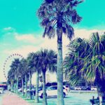 "<span class=""title"">美浜🏝  #沖縄 #okinawa #沖縄リゾート #沖縄ビーチ #ビーチ #リゾート #南国リゾート #beach #resort #paradise #tropicalisland #沖縄大好き #沖縄移住 #沖縄移住生活 #okinawagram #relax # ..</span>"