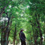 """<span class=""""title"""">𝕗𝕦𝕜𝕦𝕘𝕚 𝕋𝕣𝕖𝕖 𝕝𝕠𝕒𝕕🌿  . 沖縄に紅葉はないけど目に良いグリーンがいっぱいで癒されるし視力上がる🤞🏽  . #視力2 #備瀬のフクギ並木 #🌿</span>"""
