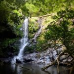 """<span class=""""title"""">Okinawa rainy season is almost here which means that waterfalls are about to be raging! Jake and I visited a new favorite over the weeke ..</span>"""