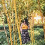 """<span class=""""title"""">""""The sun will rise and set regardless. What we choose to do with the light while it's here, is up to us."""" ☀️ . 📍Shikinaen Garden . Zayda ..</span>"""