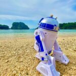 """<span class=""""title"""">🅗🅔🅛🅛🅞🅣🅗🅔🅡🅔🅞🅚🅘 ~ R2D2 is just lounging at 𝕀𝕜𝕖𝕚 𝔹𝕖𝕒𝕔𝕙. With his friend the Hermit Crab on top of his head, he's sending his regards💙🤍 """"May ..</span>"""