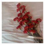 """<span class=""""title"""">. Happy Mother's Day ♡ . 感謝の気持ちを込めてお母さんに花束を 心太郎ママにもフラワーボックスを贈りました💐❤️ . . あんまりメディアでは取り上げられてないけど、 コロナの影響で沢山のお花が捨てられる """"フラワーロス問題"""" がある事を知って、少 ..</span>"""