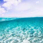 """<span class=""""title"""">. 同じポイントでも 海の表情は毎日変わるから 撮っててすごく面白い!✨</span>"""