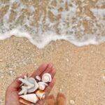 "<span class=""title"">・ 👣……フィン焼け ・ #okinawa #miyakojima #beach #ocean #shell #schnorcheln #沖縄 #宮古島 #海 #シュノーケル #ビーチコーミング #貝殻拾い #シーグラス #お宝いっぱい拾った #朝活</span>"