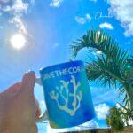 """<span class=""""title"""">【Save our oceans】  夏にマグカップ販売してますが、 私はホットに限らず マグカップ使っちゃいます😂❤️ ですが今年の冬はこのマグカップで 朝のコーヒーや、寝る前のココア 食後のお茶など、みんなで 飲んでほしいです🥳🌺  釣り人さん、ダイバーさん、 サーフ ..</span>"""
