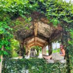 "<span class=""title"">Old overgrown places 🌿  #visitokinawa #okinawajapan #islandlife #okinawapress #okinawaalways #okinawagram #wanderingoki #okilife #okilo ..</span>"