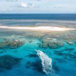 """<span class=""""title"""">. RAISE CREWのボートは小型だからこそ珊瑚の隙間にいけちゃいます🏝 このポイントは少し場所を変えただけで違う景色が見れ、島側に行けばいくほど水深が浅くなるので初心者や泳ぎが得意じゃない方にオススメ🌺  もちろん上級者の方にはチービシ諸島内であれば違うポイントへの ..</span>"""