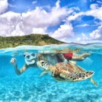 "<span class=""title"">.  【宮古島 /Miyako island】  Swim with honu🐢  They were very friendly and I had a great time. (とってもフレンドリーで遊んでる時間が楽しかった)  #japanesegirl #jap ..</span>"