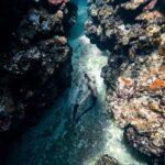 """<span class=""""title"""">Underwater PHOTO 📸🧜🏽♀️ アリエルの世界  あなただけの専属カメラマン。 一人旅や、女子旅、家族旅、カップルでのご旅行の記念に。 観光しならがら、旅をおしゃれに撮影する。 宮古島のご旅行をワン ..</span>"""