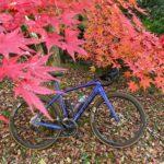 """<span class=""""title"""">どーにも遠くへ行く気力が湧かないので、近所にいいとこないかなといつものランチポタ途中の迫間不動途中のもみじを見つけたので。  里山にも降りて来ましたね。  #trekdomanesl5 #ポタリング #紅葉🍁 #ロードバイクのある風景 #roadbike_jp</span>"""