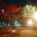 """<span class=""""title"""">【🤩🍁色とりどりの木々🌳✨】 ・・・・・・・ 赤・黄・緑から紫⁉️まで🤣💨(笑) 見ていて飽きが来ないですね🤓✨✨ 夜に駆ける🚴♂️💨 ・・・・・・・ 過去pic(2020/11/15) ・・・・・・・ #ロードバイク #メリダ #スクルトゥーラ #ロードバイクのある ..</span>"""