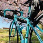"""<span class=""""title"""">【ビアンキと桜🌸】 びぃちゃんと初めて撮った桜が2年前の春🌸 仕事終わりワクワクしながら春の風を感じながら寄り道したあの頃。  コロナもない時代。  ビアンキとさくらが撮りたくて…  勿論、主役はいつだってビアンキ🚲✨ まるで我が子を撮る母の様な感じ… .. #ロードバイクJP</span>"""