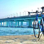 "<span class=""title"">厄祓いついでに@臨海公園⭐️  あの橋は登りたくなるやつだ✨ #自転車 #自転車のある風景 #ロードバイク #ロードバイクのある風景 #ポタリング #ロングライド #ヒルクライム #giant #cervelo #raleigh #cycletour .. #ロードバイクJP</span>"