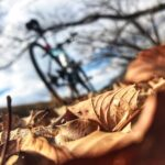 "<span class=""title"">🟠ridleyのある風景🟠 #ridley #ridleybikes #ridleytempo #リドレー #リドレーテンポ #リドレーのある風景 #リドレーのある生活 #リドレーのある景色 #クロスバイクのある生活 #クロスバイクの .. #ロードバイクJP</span>"