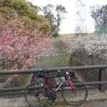 """<span class=""""title"""">#京都競馬場 #淀緑地 #自転車のある風景 2021/2/23撮影 おはようございます☀️ 京都競馬場の側にある淀緑地です🏇京都競馬場は2年先迄改修中です🙄お色直しが終わったら久々に勝負にいこうかな🤔🎶 #サイクリング #ポタリング #ロードバ .. #ロードバイクJP</span>"""