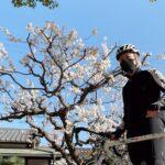 """<span class=""""title"""">#休日ライド #屯倉神社 #ロードバイクJP #自転車ある風景 #colnagoc40 #ロードバイクJP</span>"""