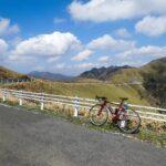 """<span class=""""title"""">_ 150Kmライド~ウイニングラン~ 石鎚山岳輪道の締めは、咲き誇るアケボノツツジが祝福してくれるウイニングラン🚲✨ #ロードバイクのある風景 #ロードバイクのある生活 #ロードバイク好きな人と繋がりたい #ロードバイク男子 #自転車のある .. #ロードバイクJP</span>"""