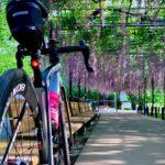 """<span class=""""title"""">#ロードバイク #自転車 #trek #トレック #emonda #エモンダ #ロードバイクのある風景 #ロードバイクのある生活 #ロードバイク好きな人と繋がりたい #ロードバイクjp #roadbike_jp #rapha #ラファ #岡崎公園 # .. #ロードバイクJP</span>"""