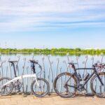 "<span class=""title"">平均パワー65Wの超絶ゆるポタ😊天気も良くて気持ち良かったです😆 #cycling #cyclinglife #cyclingphotos #roadbike_jp #ロードバイク #ロードバイクのある風景 #ロードバイク好きな人と繋が .. #ロードバイクJP</span>"