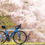 """<span class=""""title"""">私のGWは今日です。 天気もいいし、桜もきれい🌸 重たいカメラとレンズを背負って56km走りました。 途中自転車屋さんへ寄って、素敵な誘惑があったので、つい購入。 明日取りに行くので、明日また載せようかな  #ロードバイク #自転車 #ロードバイク初 .. #ロードバイクJP</span>"""