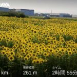 "<span class=""title"">朝4時半に出発〜8時半に帰宅の早朝ライドでしたが、なんとか日差しと暑さを回避できました。9月ぐらいまではこの時間帯ですね。 #giant #giantdefy #giantdefyadvanced2 #犬山城 #日本の夏 #orimpusp .. #ロードバイクJP</span>"