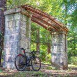 """<span class=""""title"""">先日の大宮公園ライド😊  ここが一番蚊にかまれたスポット🤣 数分で10箇所どころではないです🤣 ウェアなんか気にせず吸いまくりです🤣  #cycling #cyclinglife #cyclingphotos #roadbike_jp #ロードバイク .. #ロードバイクJP</span>"""