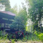 """<span class=""""title"""">竹原市福田町の小高い場所にひっそりと佇む観音堂。  竹林に囲まれたこの場所には静かで厳かな空気感に包まれていました。  近所の方でもあまり知ることのないこの観音堂。 周囲は少し荒れてしまってましたが、もし綺麗に整える事が出来たら本当に素敵な場所になるな .. #ロードバイクJP</span>"""