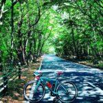 "<span class=""title"">🚴♂️  緑のトンネル🌳🌲🍃🌿 ・  #celeste #roadbike #bianchi #bianchiaficionado #cycling #bicycle #bluesky #lake #mtfuji #cycling_jp #road .. #ロードバイクJP</span>"