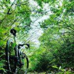 """<span class=""""title"""">今日の朝活は やんばるの森をパトロール…。  #おきなわ #やんばる #やんばる国立公園 #自転車のある生活 #自転車のある風景 #自転車のある暮らし #ロードバイク #ロードバイクのある生活 #ロードバイクのある風景 #ロードバイクのある暮らし # .. #ロードバイクJP</span>"""