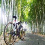 """<span class=""""title"""">. 今日も荒川CRをゆるぽた。まずは腹ごしらえにキッチンとれたてへ! ん?なんか虫が多い!!除草作業してるから?涼しくなったから?めっちゃぶつかってくるやん。 ご飯食べて自転車乗ろうとするとお先にバッタがスタンバイ…。 その後は北へ向かって板橋の竹林で .. #ロードバイクJP</span>"""