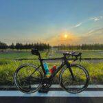 """<span class=""""title"""">バーテープを新しくしました😭! タイヤと一緒の色にようやくできた! 辛子色のMéridaちゃんw これからも宜しく👍  夕日をバックに綺麗に撮れて自己満😎!!!  #ロードバイク #ロードバイクのある風景 #ロードバイク女子 #ロードハ .. #ロードバイクJP</span>"""