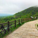 """<span class=""""title"""">過去PICより  自然の中に入らないと、インスピレーションが湧かない😓  コロナよどれだけ奪えば気が済むのだ  旅がしたいなぁ🚴♂️  . . . . . . . #ロードバイク #サイクリング #ロードバイクのある風景 #自転車 #ロードバ .. #ロードバイクJP</span>"""